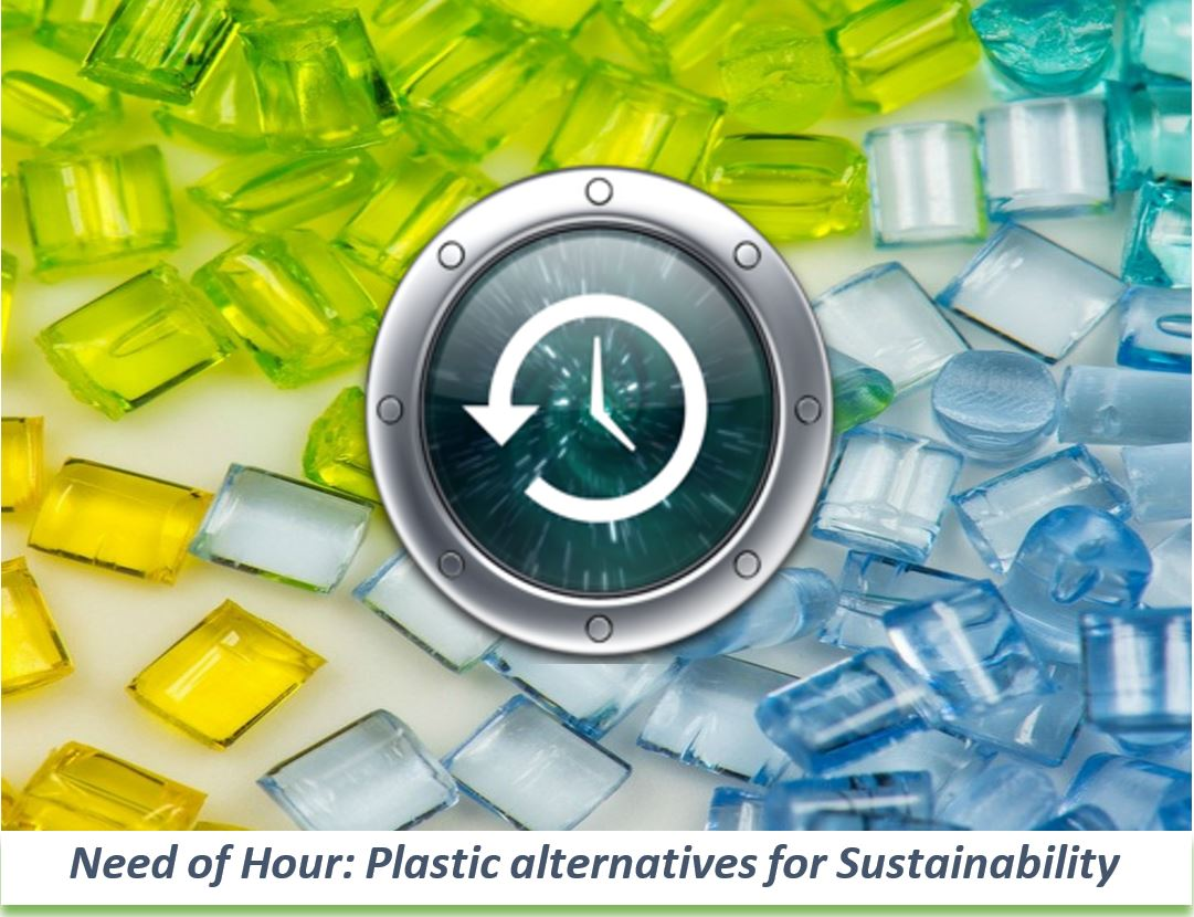 Need of Hour: Plastic Alternatives for Sustainability