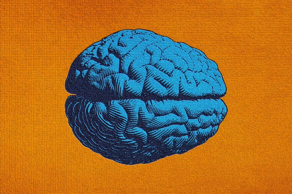 Unraveling The Mysteries Of Brain