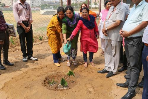 World Environmental Day -6